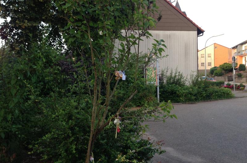 Der Windsberger Schnullerbaum am Wendeplatz (Foto: hh)