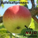 Artikelbild - NAJU Apfelsaftpressen