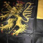 Pfalzflagge